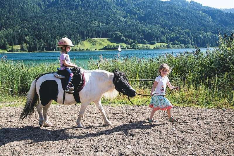 Ein Besuch am Pferdehof Rupitsch